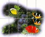 Acquario-01---Tundra.jpg -